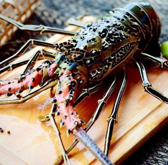 Back by Popular Demand - Lobster at $60.00 per pound!